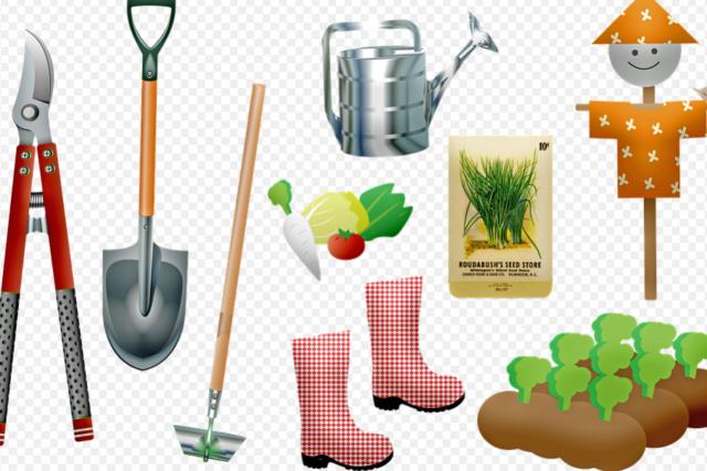 Les outils essentiels à choisir pour bien jardiner